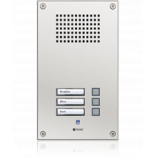 Analogue vandal resistant wallmount station with three call buttons